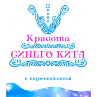 """Песня """"КРАСОТА СИНЕГО КИТА"""", с видеотекстом. DVD"""